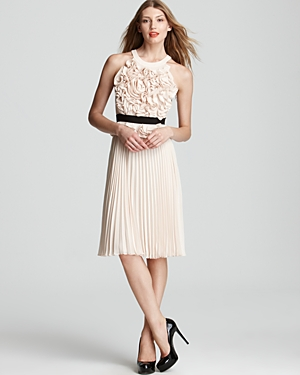 BCBGMAXAZRIA Safina Floral Pleated Dress